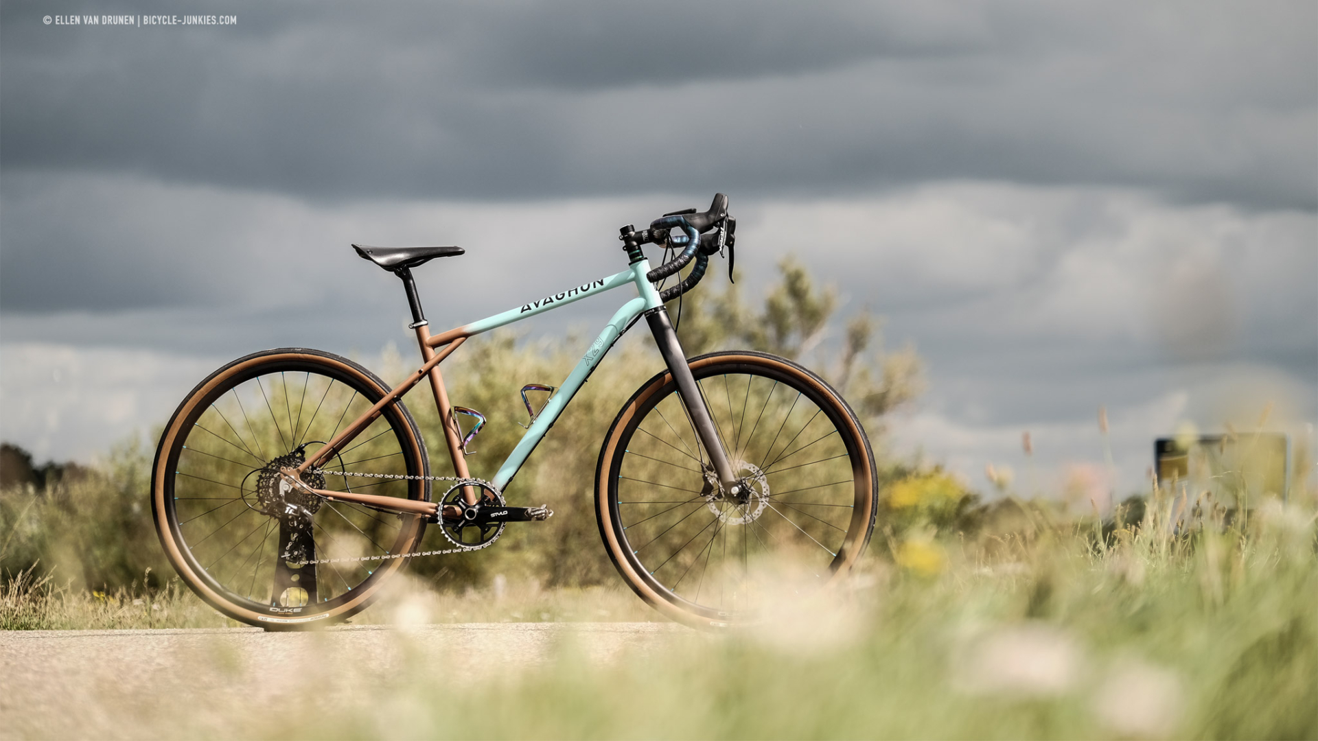 Avaghon X29 Gravelbike