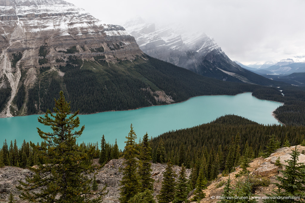 Cycling the Icefield Parkway